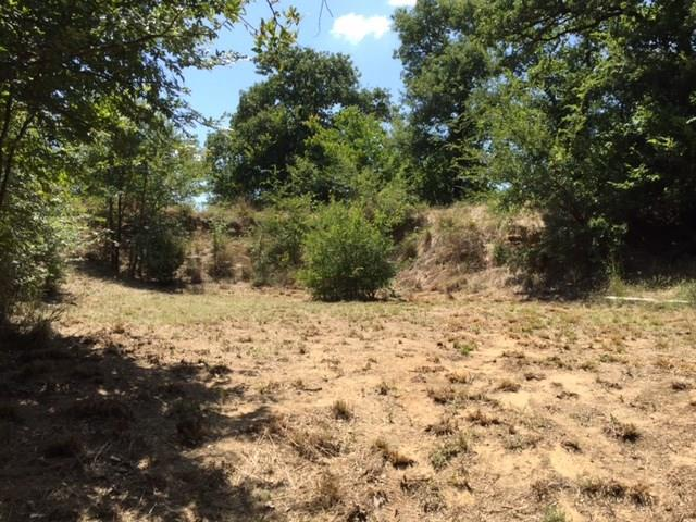 Sold Property | LOT84 DIAMOND POINT Drive Oak Point, Texas 75068 7
