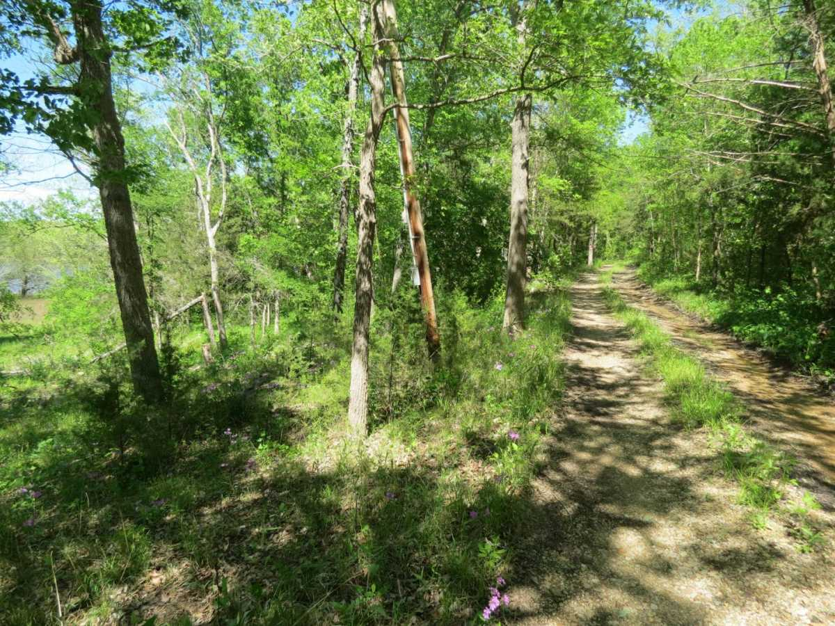 land, ranch, recreational, hunting, oklahoma | #12 Meandering Way Fort Towson, OK 74735 8