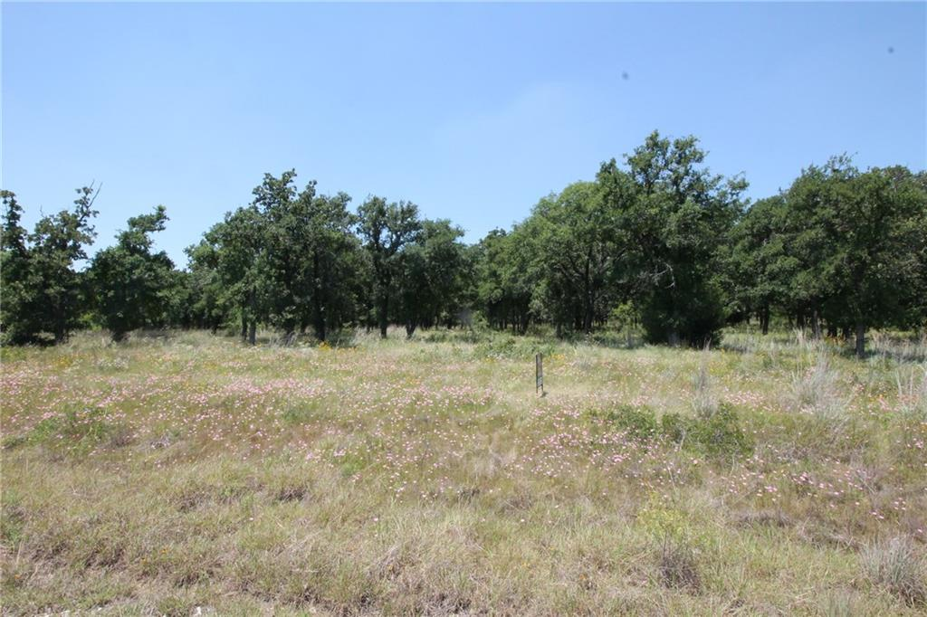 Sold Property | L 221 Ridgeline Drive Chico, TX 76431 0