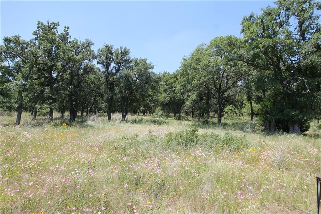 Sold Property | L 221 Ridgeline Drive Chico, TX 76431 1