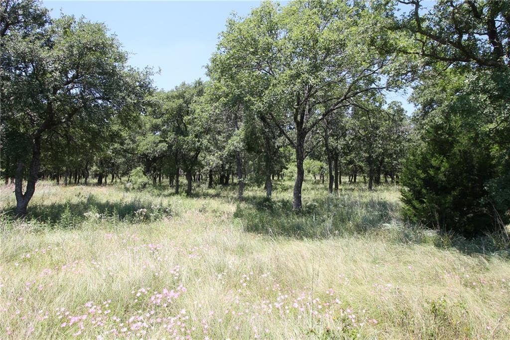 Sold Property | L 221 Ridgeline Drive Chico, TX 76431 2