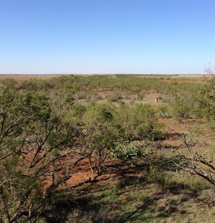 Sold Property | 001 CR 618  Haskell, Texas 79521 11