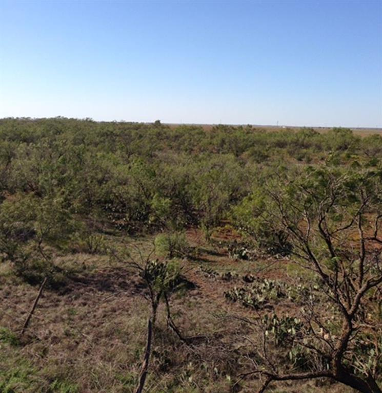 Sold Property | 001 CR 618  Haskell, Texas 79521 12