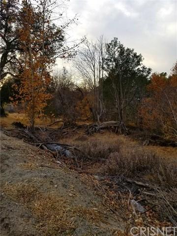 Closed   0 Sierra Highway Agua Dulce, CA 91350 11