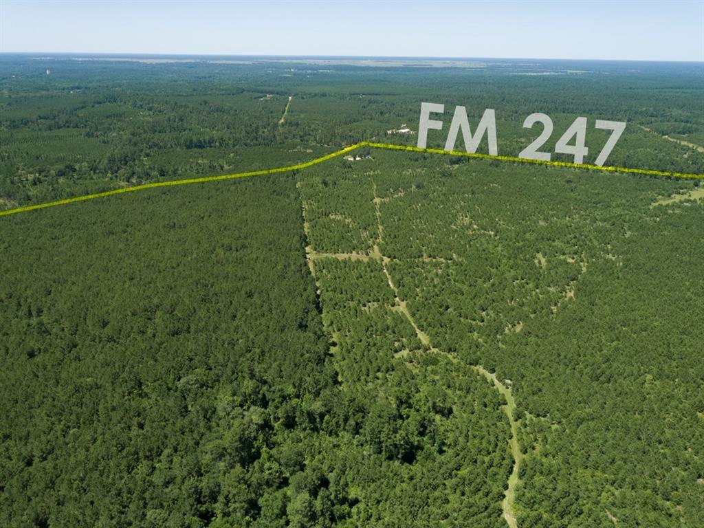 Active   000000 FM 247 Huntsville, Texas 77320 24