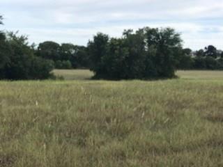 Pending | 6260 Bleiblerville Road Brenham, Texas 77833 7