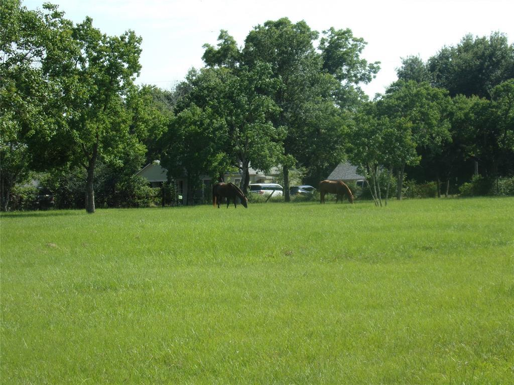 Pending | 1108 Silliman  Street Sealy, TX 77474 15