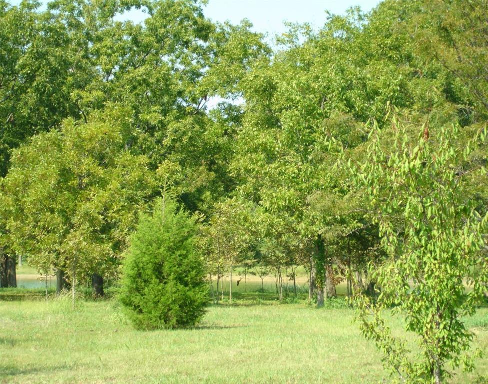 Sold Property | 14 Baybridge  Corsicana, TX 75144 2