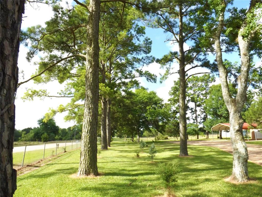 Fantastic Country Home On Right Size Acreage | 1187 Fm 1890 Columbus, TX 78934 8
