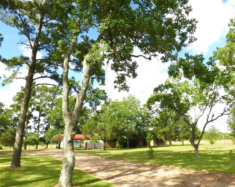 Fantastic Country Home On Right Size Acreage | 1187 Fm 1890 Columbus, TX 78934 11