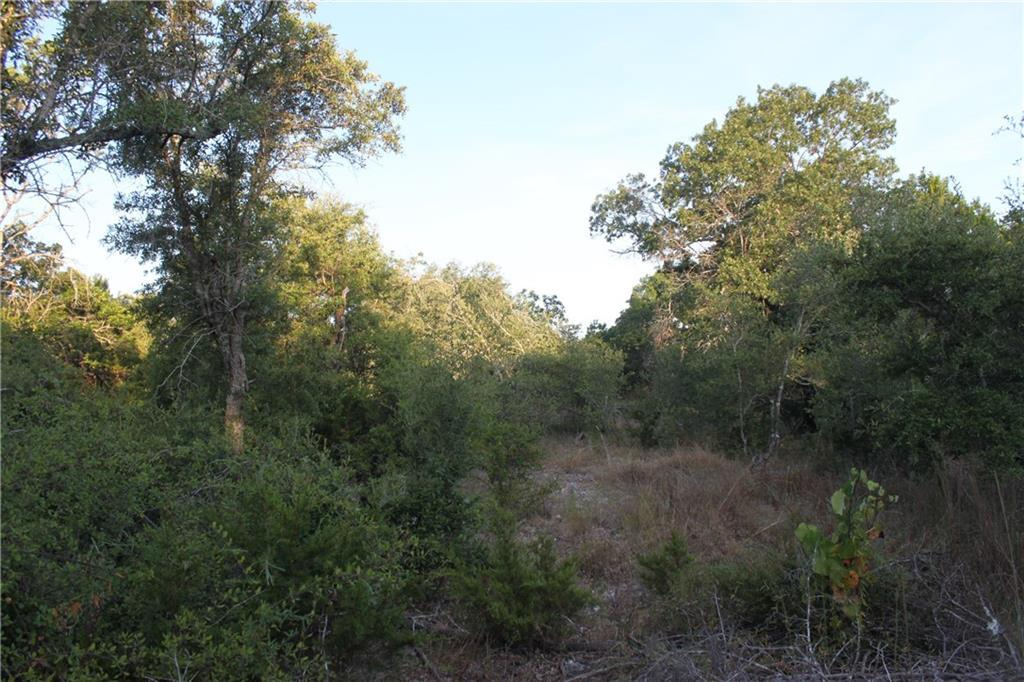 Sold Property | TBD County Rd 282 Liberty Hill, TX 78642 0