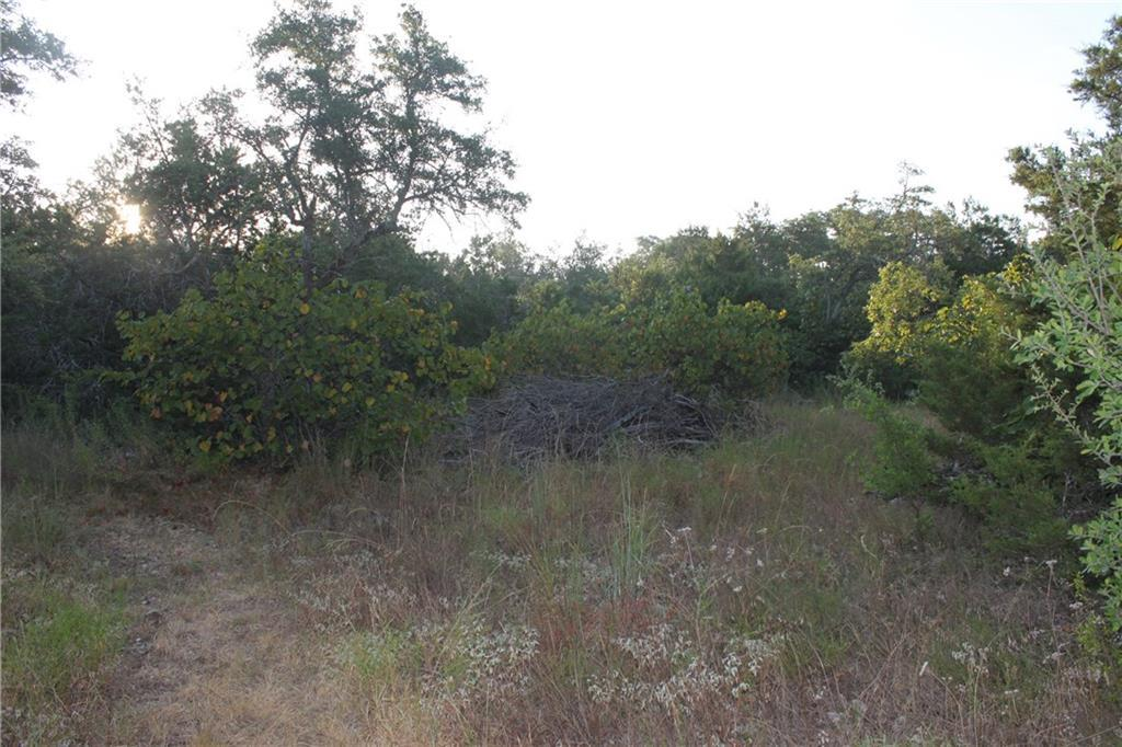 Sold Property | TBD County Rd 282 Liberty Hill, TX 78642 2