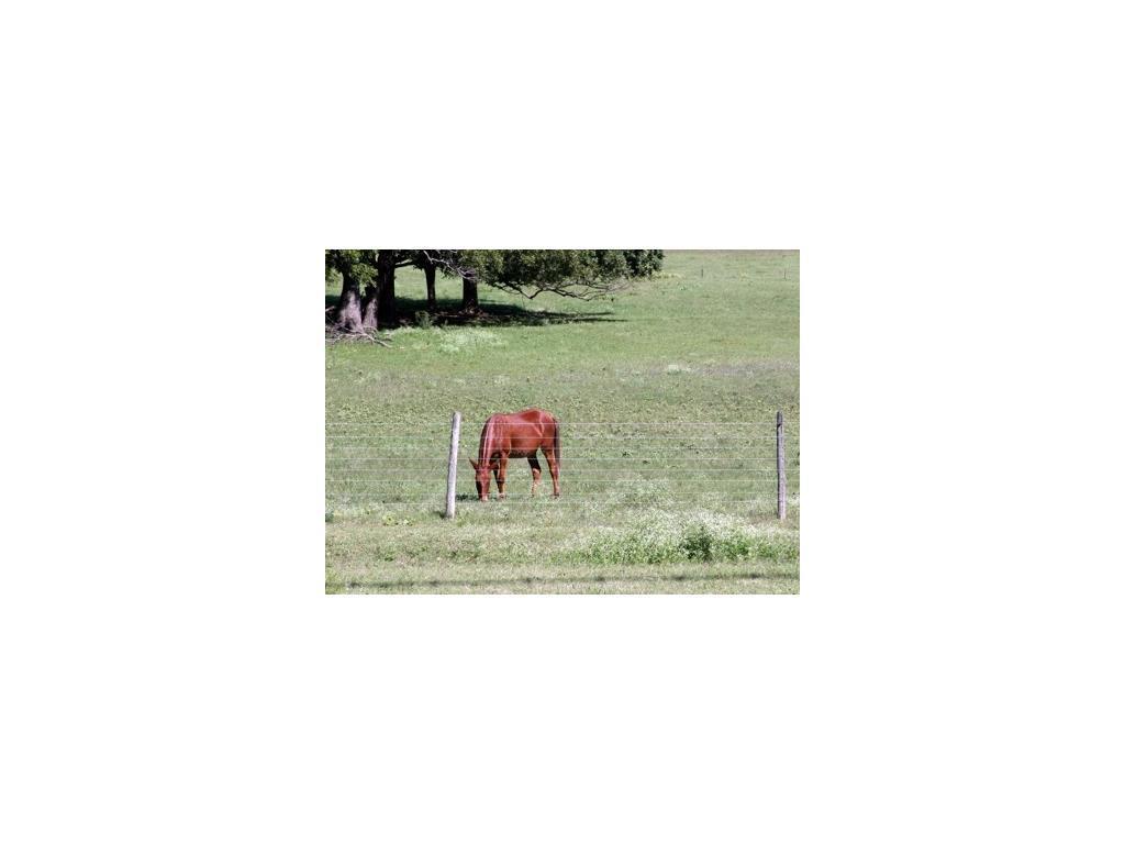 Sold Property | 1291 Gray Branch Road McKinney, Texas 75071 11