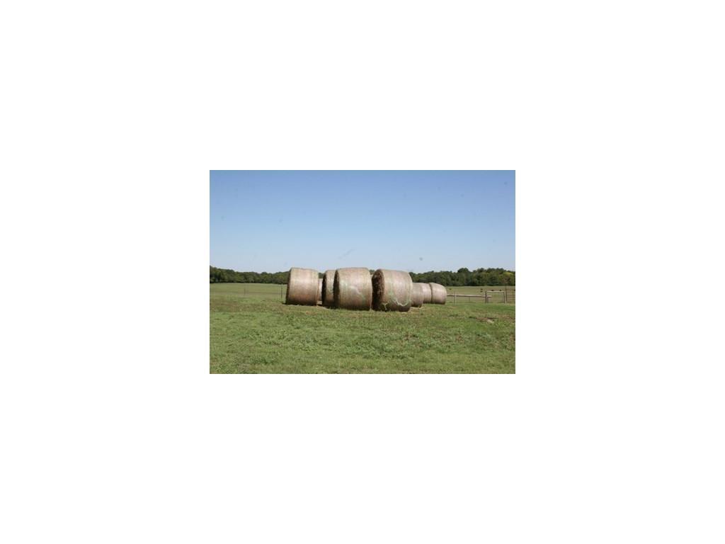 Sold Property | 1291 Gray Branch Road McKinney, Texas 75071 12