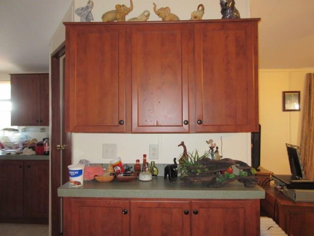 Sold Property | 21429 Coyote Trail Lago Vista, TX 78645 14