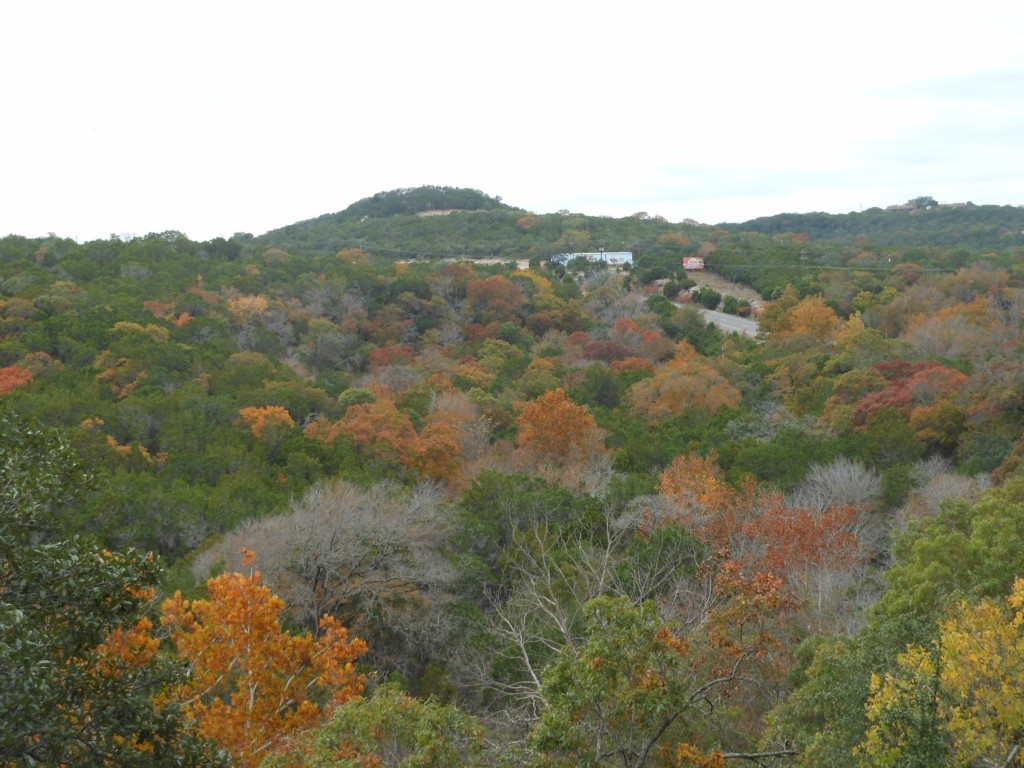 Sold Property | 18309 Lura Lane Jonestown, TX 78645 20