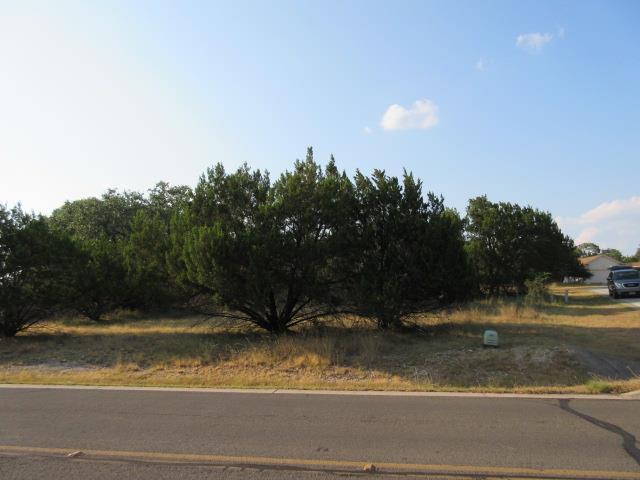Sold Property | 18808 Venture Drive Point Venture, TX 78645 0