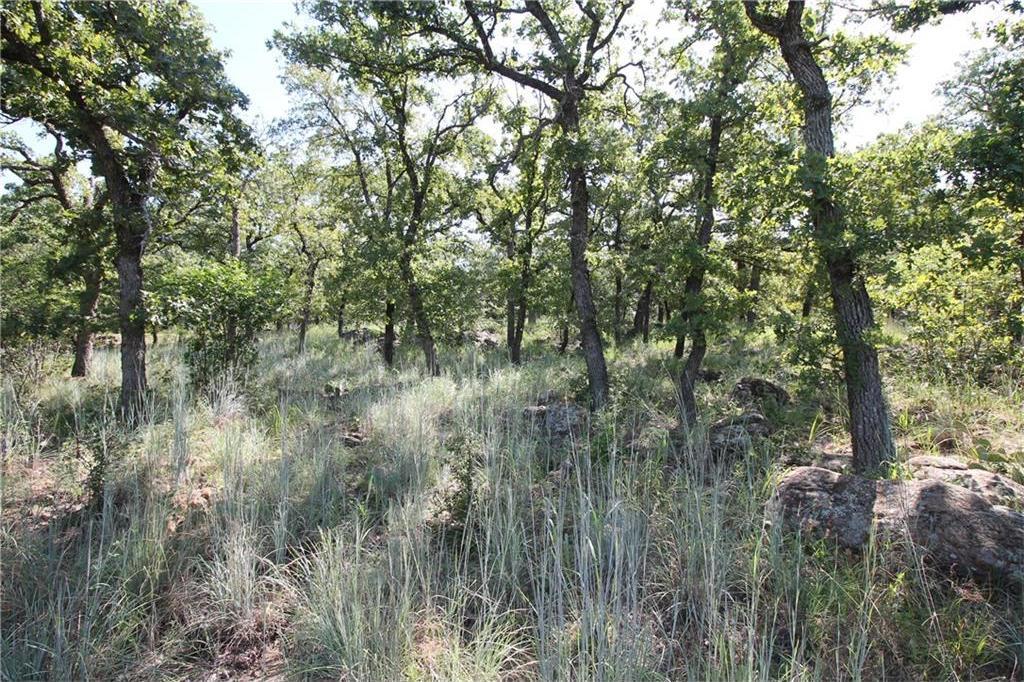 Sold Property | L 265 Ridgeline Drive Chico, TX 76431 0