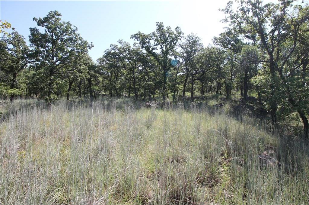 Sold Property | L 265 Ridgeline Drive Chico, TX 76431 1