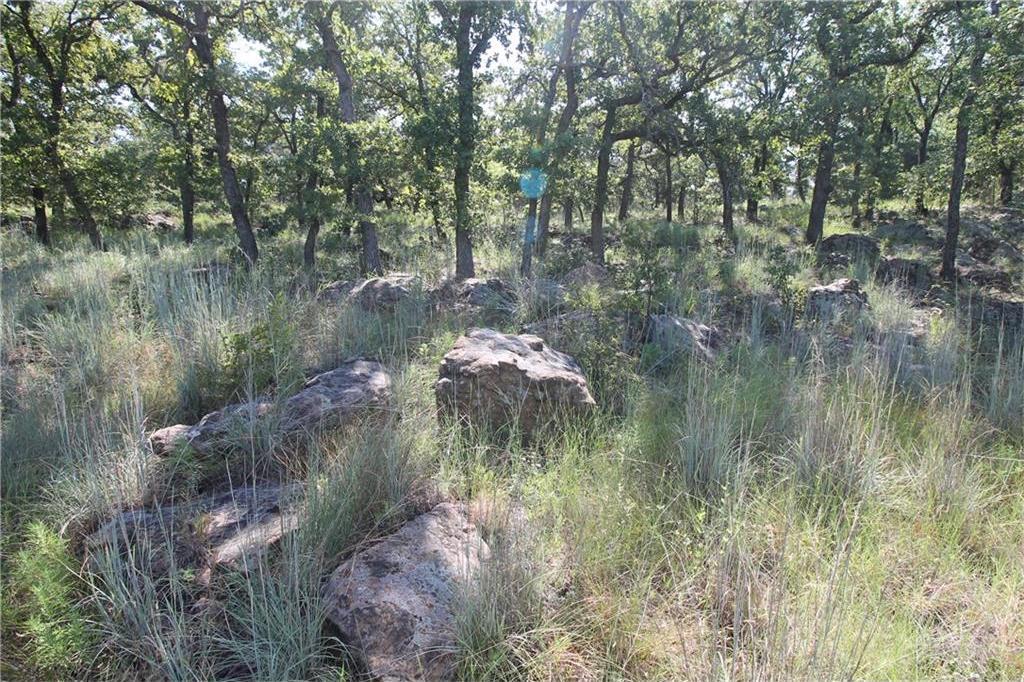 Sold Property | L 265 Ridgeline Drive Chico, TX 76431 2