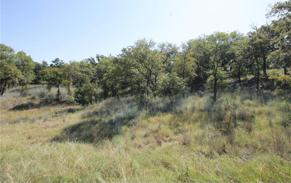 Sold Property | L 265 Ridgeline Drive Chico, TX 76431 3