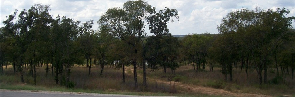 Sold Property | L 265 Ridgeline Drive Chico, TX 76431 4