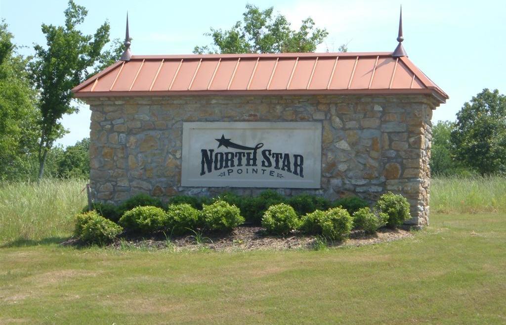 Sold Property | L 265 Ridgeline Drive Chico, TX 76431 8