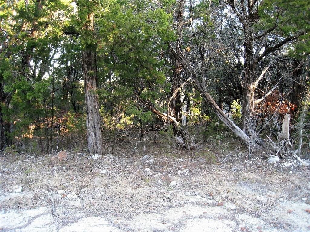 Sold Property | TBD Jennifer  Whitney, TX 76692 2