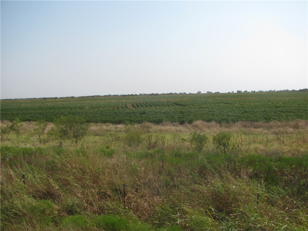 Sold Property | 130.2 CR 431  Anson, Texas 79510 1