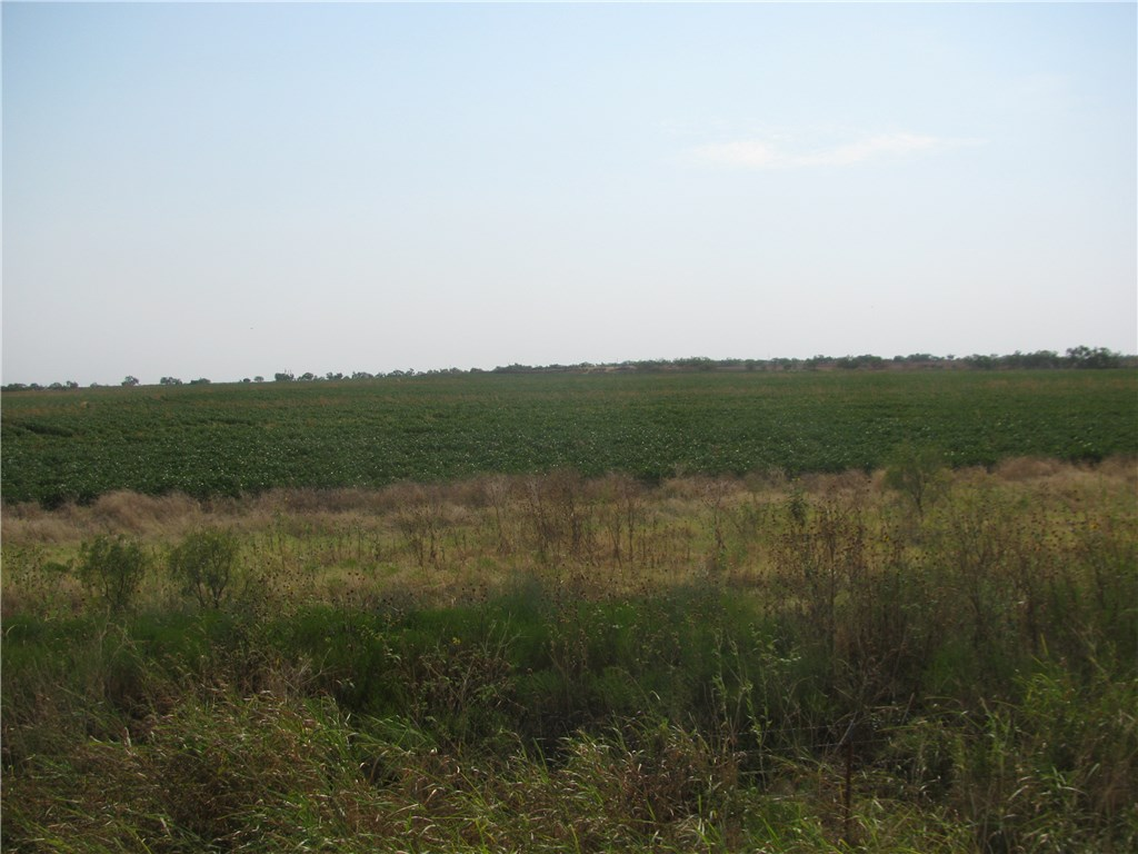 Sold Property | 130.2 CR 431  Anson, Texas 79510 2