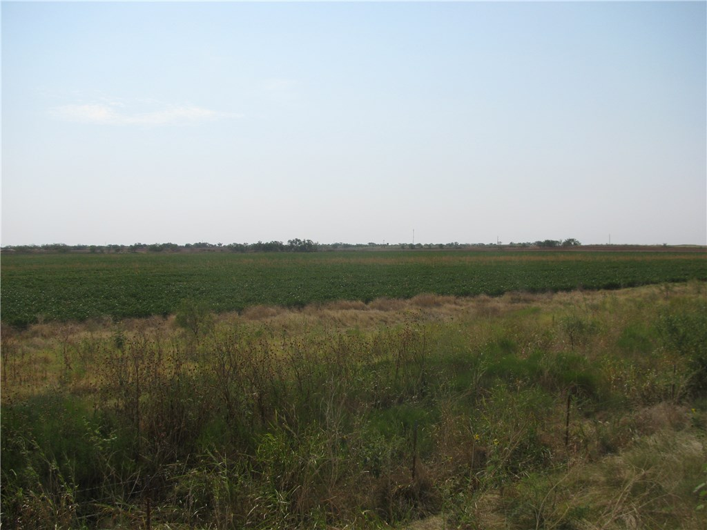 Sold Property | 130.2 CR 431  Anson, Texas 79510 3