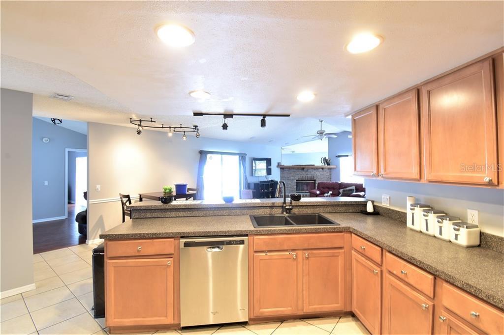 Sold Property | 3915 TURNBURY  STREET VALRICO, FL 33596 11