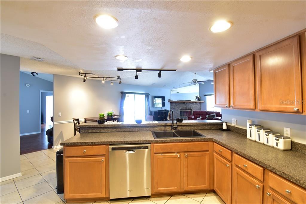 Sold Property | 3915 TURNBURY  STREET VALRICO, FL 33596 8