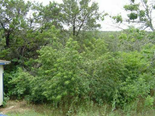 Sold Property | Address Not Shown Leander, TX 78641 7
