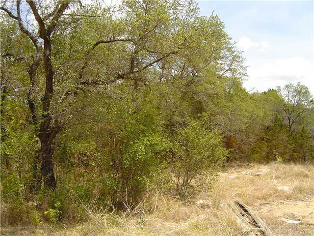 Sold Property | 1501 Minnie Austin, TX 78732 3