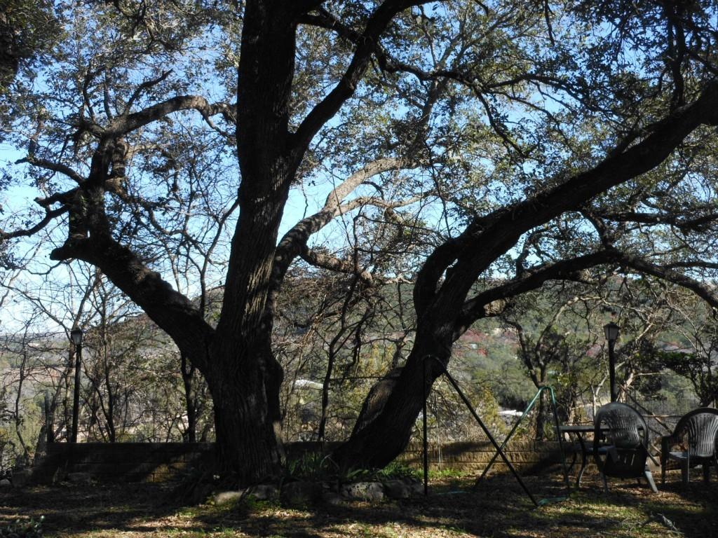Sold Property | 11609 Travis  ST Jonestown, TX 78645 3