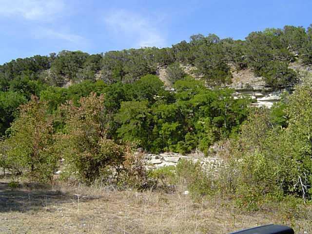 Sold Property | 17702 Sandy  LN Jonestown, TX 78645 3