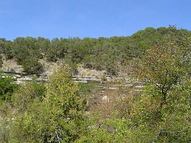 Sold Property | 17702 Sandy  LN Jonestown, TX 78645 7