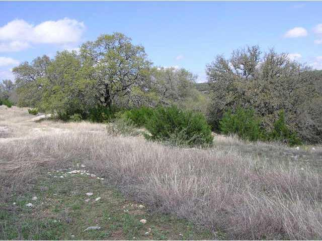 Sold Property | 12208 Montana Springs  DR Marble Falls, TX 78654 4