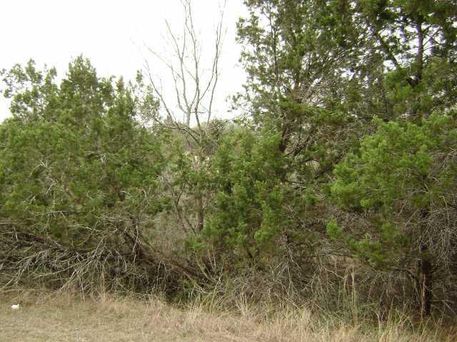 Withdrawn | 20905 Green Park  DR Lago Vista, TX 78645 0