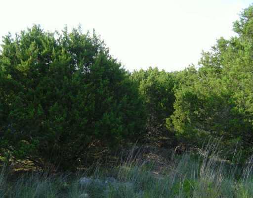 Sold Property | 20914 Nimitz Lago Vista, TX 78645 0