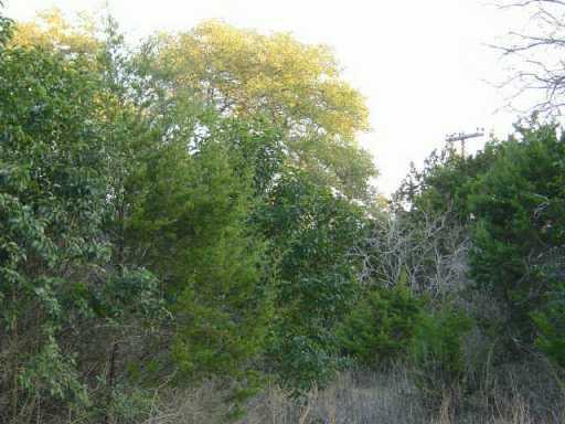 Sold Property | 11107 Oak  ST Jonestown, TX 78645 2