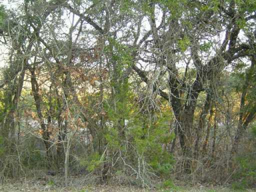 Sold Property | 11107 Oak  ST Jonestown, TX 78645 3