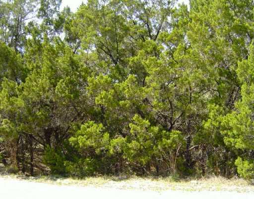 Sold Property   11115 Elm  ST Jonestown, TX 78645 0
