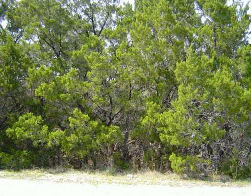 Sold Property | 18512 Hobby  LN Jonestown, TX 78645 0
