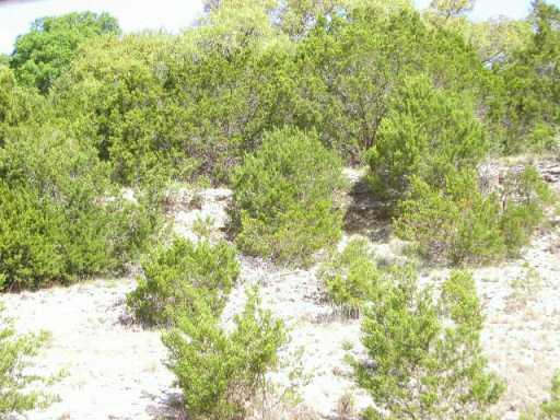 Sold Property | 18314 Lake Terrace  DR Jonestown, TX 78645 2