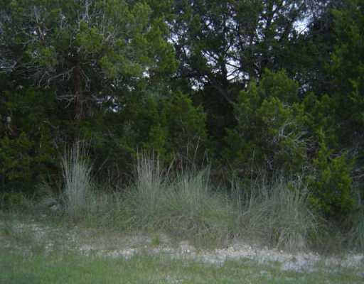 Sold Property | 213 SOUTHWIND  RD Point Venture, TX 78645 0