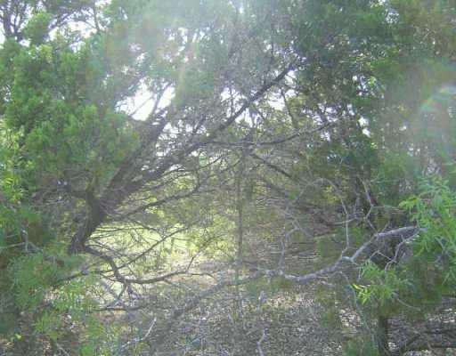Sold Property | 1400 Cardinal  AVE Lago Vista, TX 78645 0