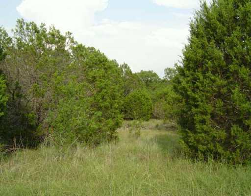 Sold Property | 21105 RINGTAIL  CV Lago Vista, TX 78645 0