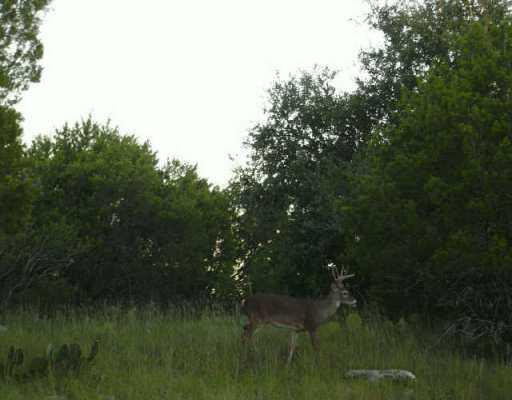 Sold Property | 21506 Santa Elena  CIR Lago Vista, TX 78645 0
